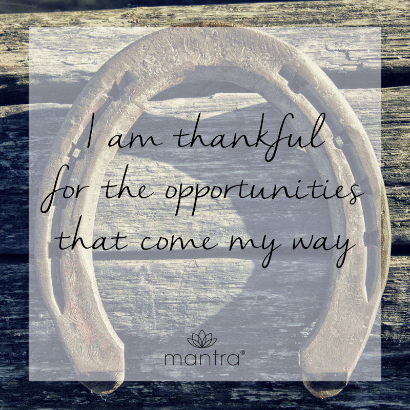 I am thankful for the opportunities that come my way