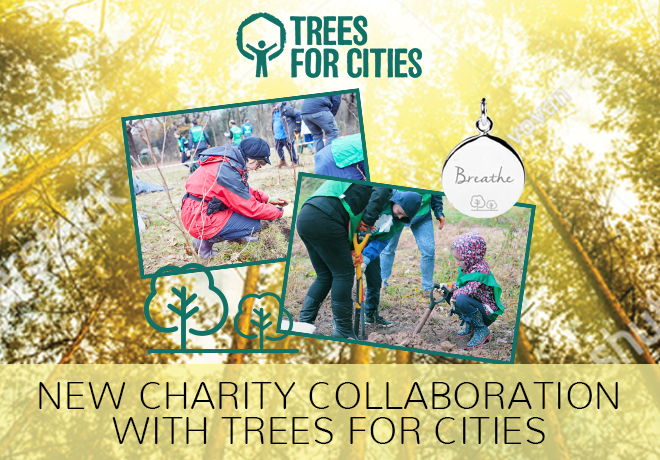 Charity Collaboration with Trees for Cities