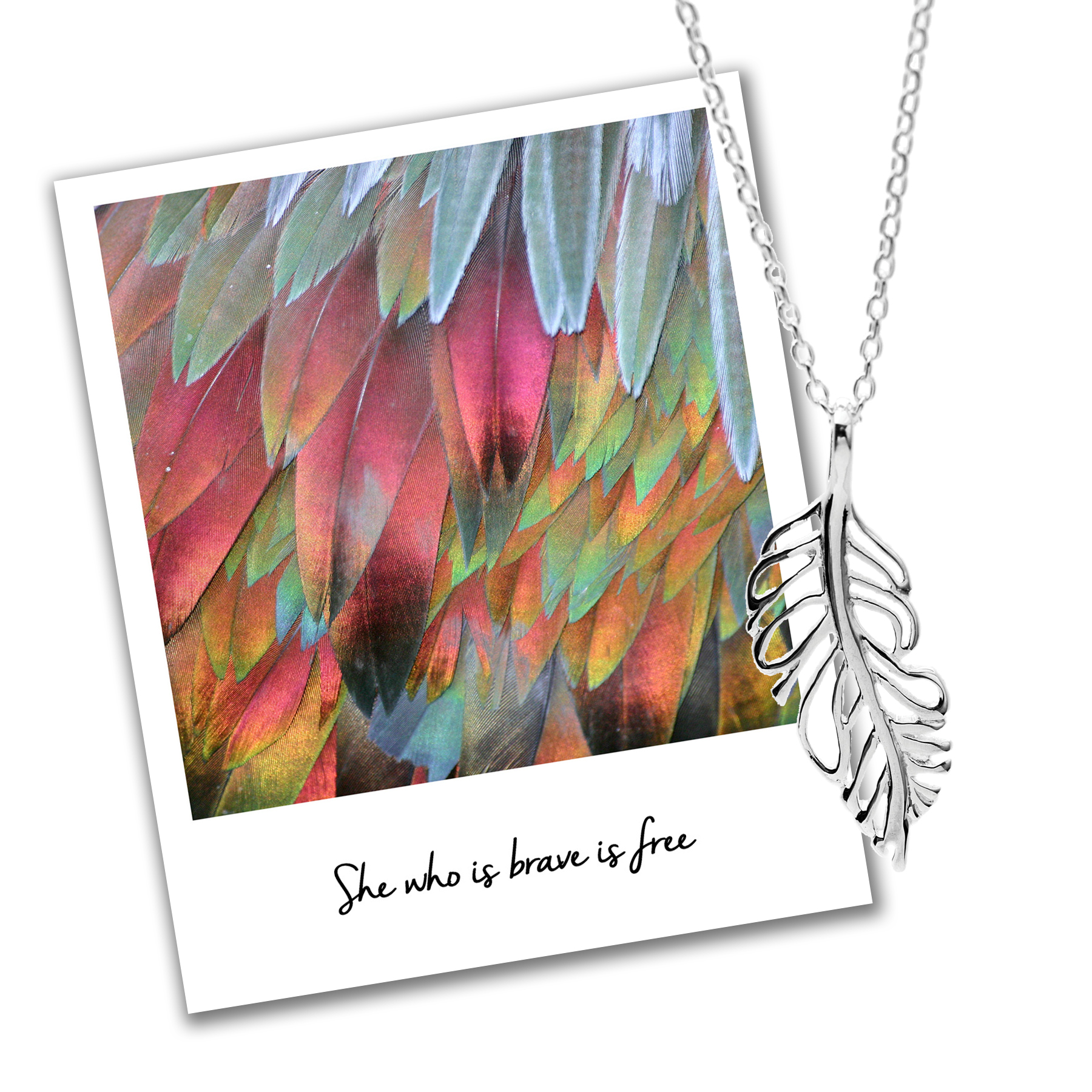 she who is brave is free mantra jewellery feather necklace