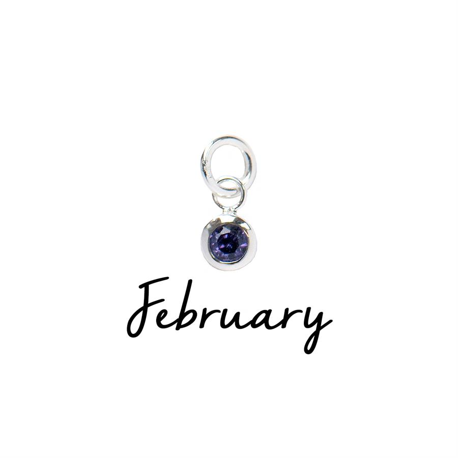 Sterling Silver February CZ Birthstone Pendant